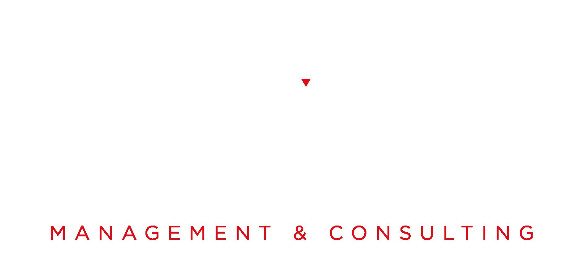 Logo Future Vision srl – bianco verticale